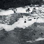 Olona fleuve pollué