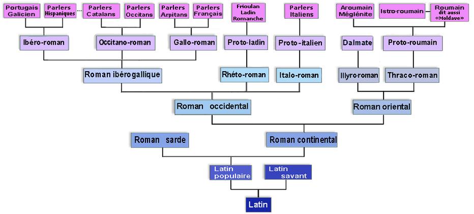 arbres des Langues Romanes